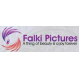 Falki Pictures Techno Art Shop